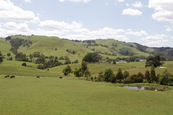 Looking out on the South Gippsland hills between Korumburra and Leongatha