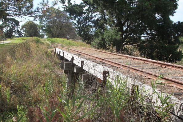 Timber pile bridge at Tooradin Station Road