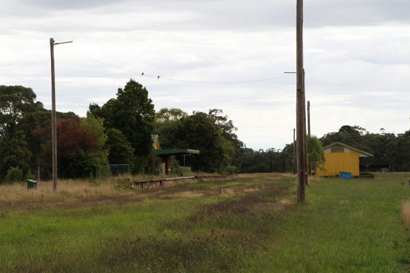 Tracks at Nyora station being slowly covered by grass