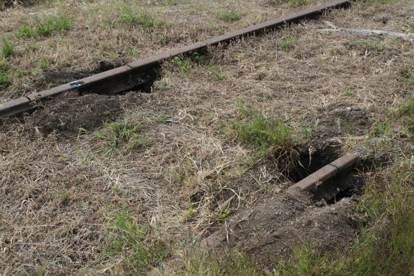 Rail in the yard at Leongatha station cut into lengths for removal
