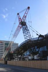 The huge crane used to remove the three tower cranes from the site