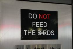 'Do NOT feed the birds' sign at Southern Cross Station