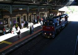 N464 running around at Geelong