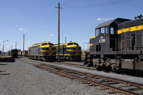 SRHC - Maryborough March 2010