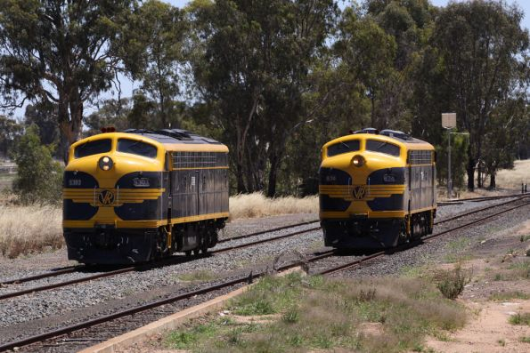 S303 and B74 run parallel towards the train