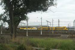 S317, T381 and T386 ready to depart North Melbourne with a SSR grain train bound for Geelong from Kensington