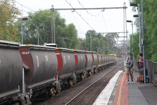 SSR grain wagons waiting to be pushed back into the mill siding at Kensington