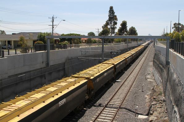 S317, S302, P18 and B75 lead a down Deniliquin grain train through Ginifer