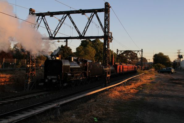 Steamrail - Echuca Explorer October 2018
