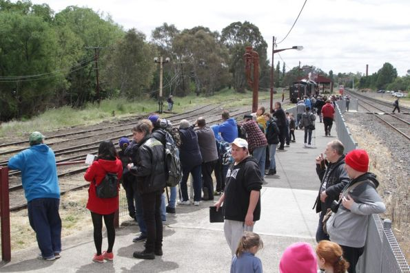 Onlookers galore at Castlemaine station