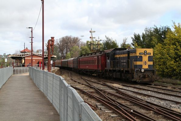 T395 at the tail end of the train in the yard at Castlemaine