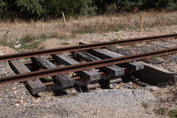 Cattle grid beside a level crossing