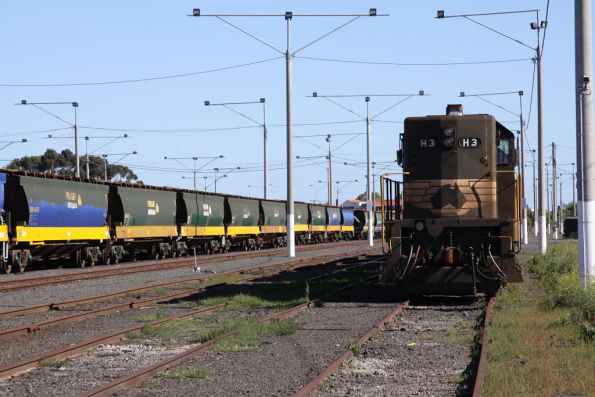 H3 leads the other rake of stored locos at North Geelong Yard