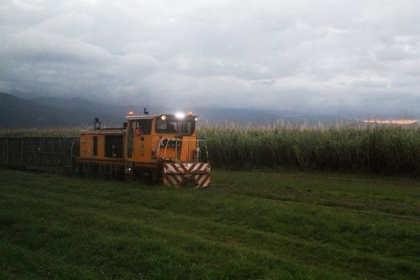 Cane train heads in the opposite direction to us, south of Gordonvale