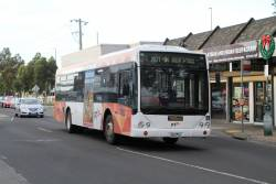 Ventura bus #1180 2563AO on a Sunbury line rail replacement service along Sun Crescent, Sunshine