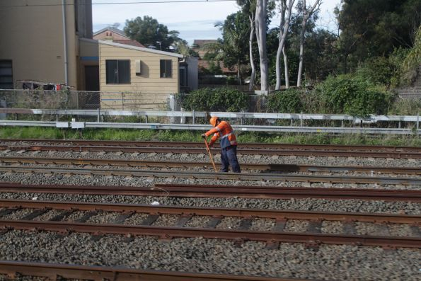 Tweaking the rails on the main Illawarra lines at Sydenham