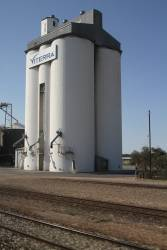 Concrete grain silos at Tailem Bend