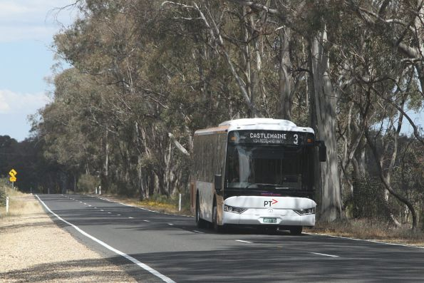 Whitmore Group bus BS03OZ in PTV livery on route 3 between Castlemaine and Maldon