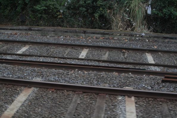 Mix of timber and concrete sleepers between East Richmond and Burnley stations