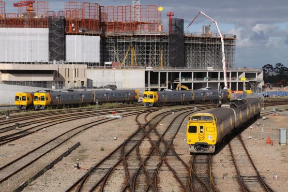 Trains everywhere outside Adelaide station, with the new medical research centre taking shape on the old railcar depot site