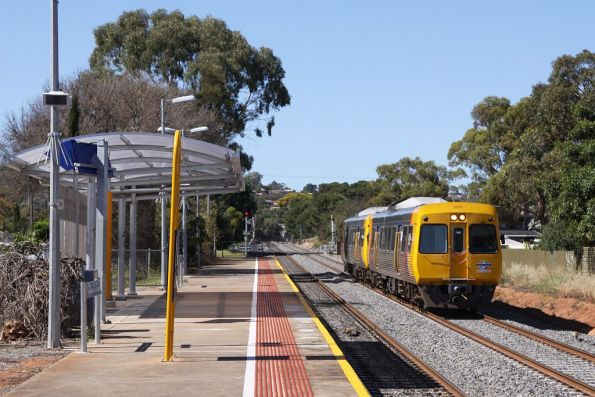 Comeng 3003 arrives into Seacliff station, the staggered platforms are to reduce level crossing delays