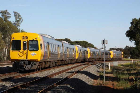 Adelaide's longest train: the 6-car empty car move at Torrens Junction, this time it is two 3100 class sets, and two 3000 class units