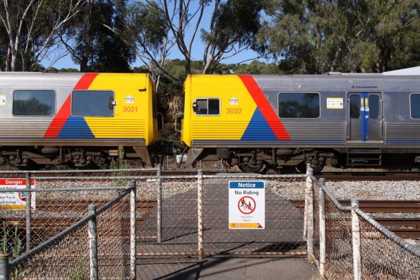 Comeng 3021 and 3022 form a 2-car train at Torrens Junction