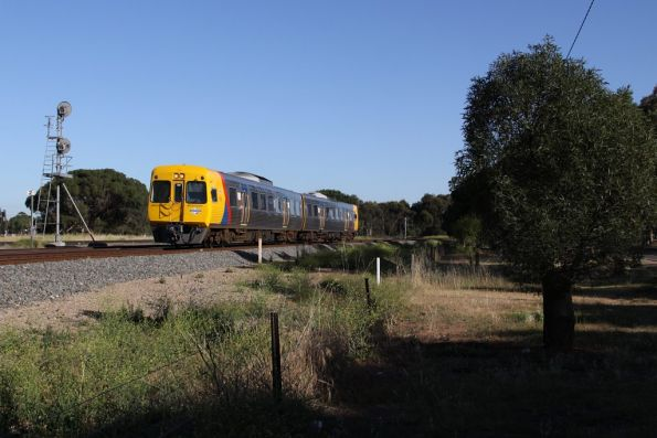 Comeng 3111 and classmate on the up passes the standard gauge signal at Torrens Junction