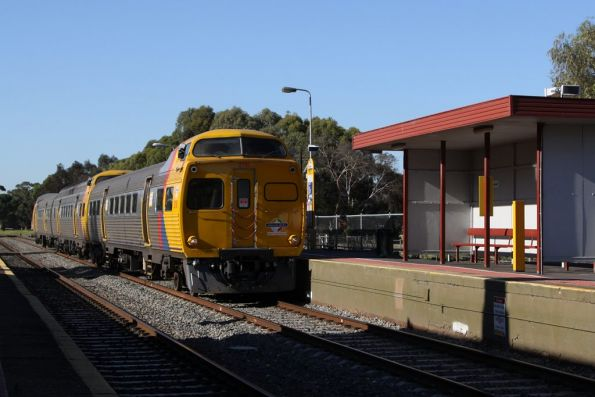Jumbo 2116 leads a 3-car set through North Adelaide on the down