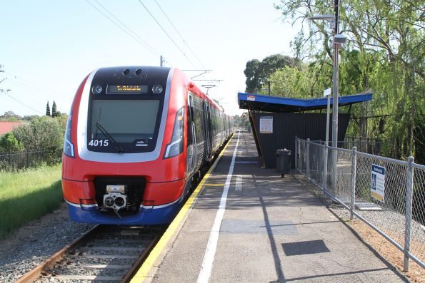A-City train 4015 waits at Clovelly Park station