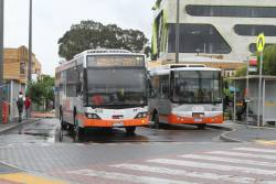 Smartbus liveried Transdev buses #938 7931AO and #567 6336AO on route 220 at Sunshine station