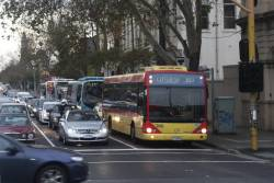 Queue of four citybound Transdev buses waiting to turn right from Hoddle Street into Victoria Parade