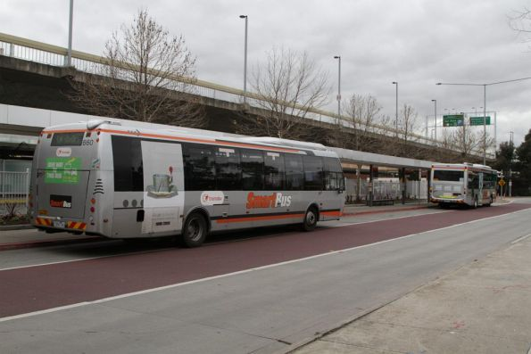 Pair of SmartBus liveried Transdev buses on route 901 waiting at the Melbourne Airport stop outside the Qantas domestic terminal
