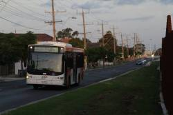 Transdev bus #427 rego 7827AO on a route 216 service along Forrest Street, Albion