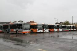 Transdev buses at North Fitzroy depot