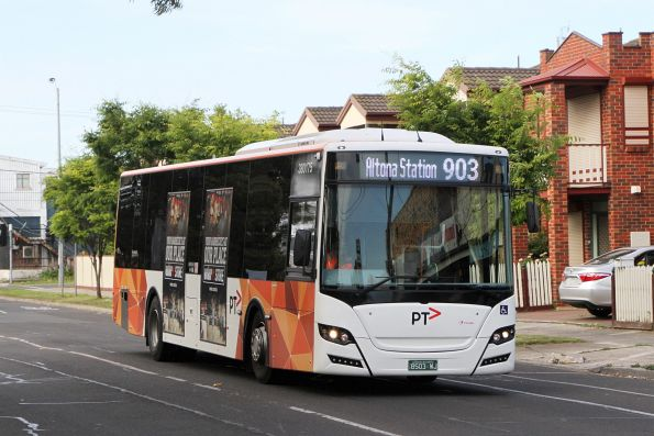 Transdev bus #175 BS03WJ on route 903 along Hampshire Road, Sunshine