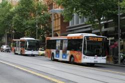 Transdev bus #995 9101AO on route 237 and #432 7832AO on route 232 head west at Collins and King Street