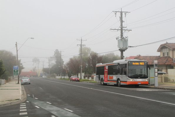 Transdev bus #8624 8068AO on route 903 along Hampshire Road, Sunshine.