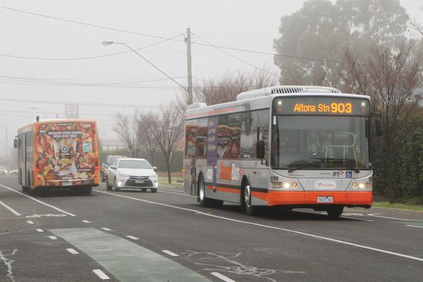 Transdev #8298 7637AO on route 903 along Hampshire Road, Sunshine