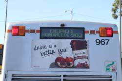 'Depot / Mordialloc 903' displayed on the rear destination board of a Transdev bus