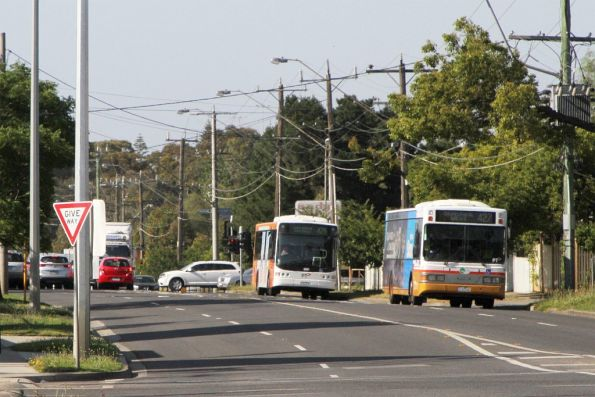 Transit Systems bus on route 427 leads a Transdev bus on route 426 along Anderson Road, Sunshine