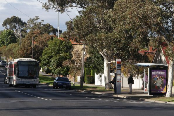 Tullamarine Bus Lines bus #10 1110AO on a route 477 service on Mount Alexander Road, Essendon North