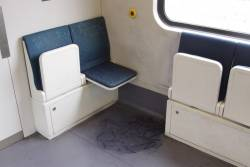 Is it possible to find a Siemens train that *doesn't* have a repulsive interior?