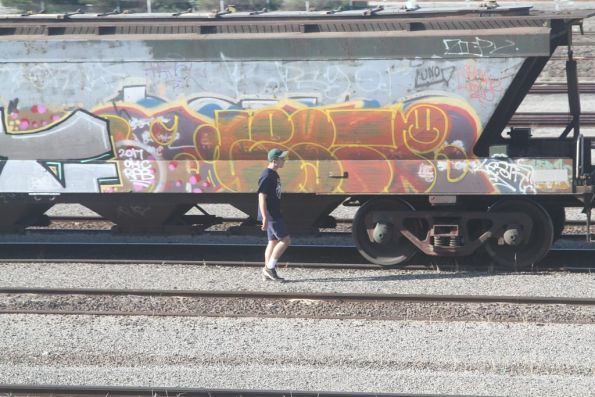 Going for a wander past the graffitied grain wagons at Tottenham Yard