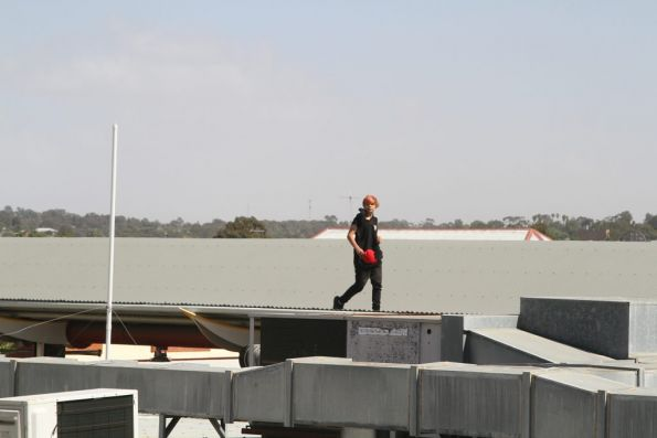 Local scrote goes for a walk along the station roof at Bendigo