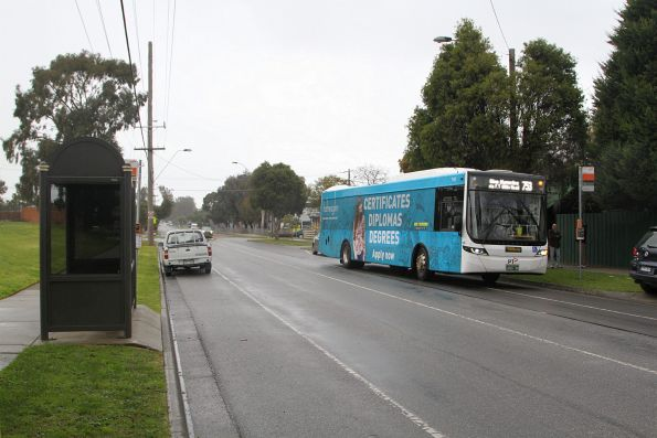 Ventura #1243 BS01MQ on a route 753 service in Glen Waverley