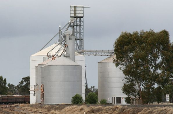 Murchison East: Murphy silo with annex in the foreground, then a Ascom silo and Jumbo unit