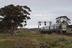 VLocity VL17 and classmates heads for Geelong at Manor Junction
