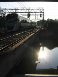 VLocity passing over Moonee Ponds Creek