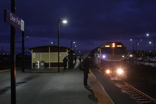 N461 arrives into Deer Park with a citybound service